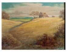 """""""Cabin in Meadow"""""""