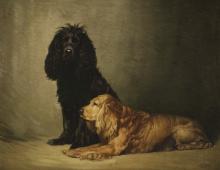 Skippy and Petey